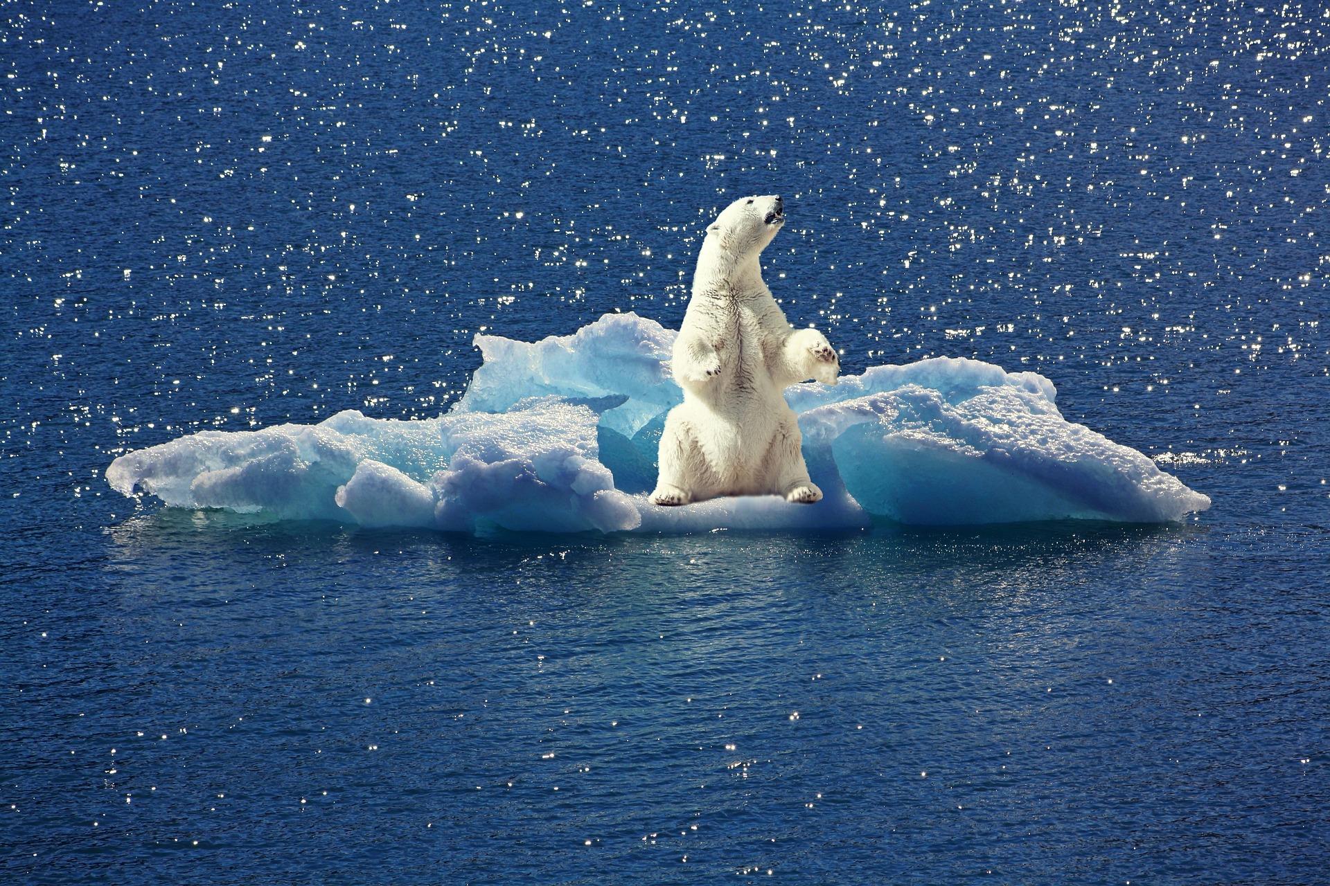 Mehr Klimaschutz, mehr Artenschutz, mehr Umweltschutz